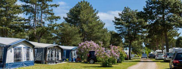 Camping nær København