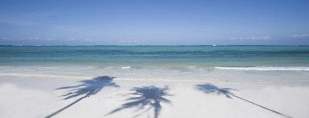 Billig Zanzibar rejse til rådighed online